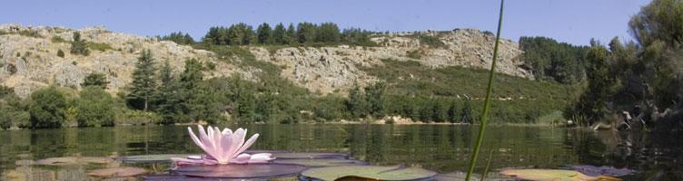 Berchidda, bacino artificiale sul Monte Limbara