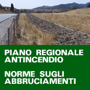 Piano regionale antincendio
