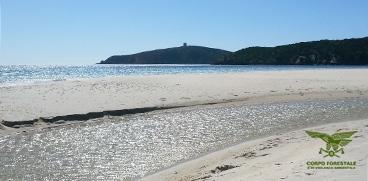 Sardegnacorpoforestale chi siamo notizie prelievo di for Setacciavano la sabbia dei fiumi